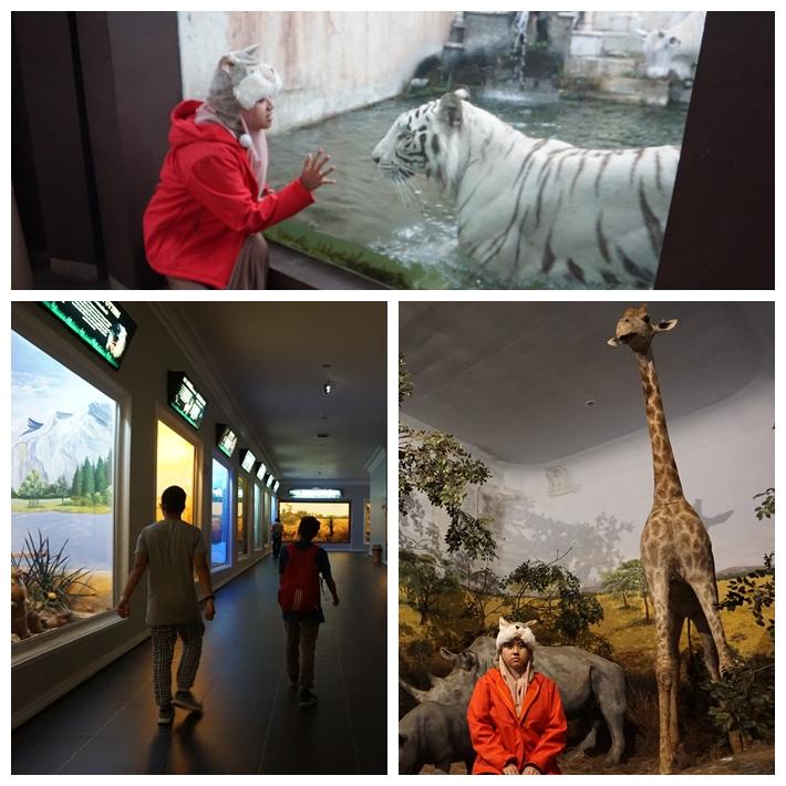 D1 - Museum.jpg